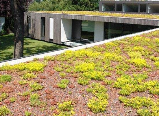 projekt familien bungalow mit innenhof competitionline. Black Bedroom Furniture Sets. Home Design Ideas