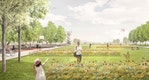 Zschopau-Wiesen mit Sommerflor