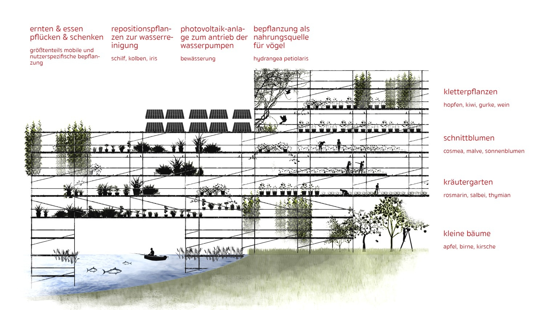 Groß Vogel Diagramme Galerie - Verdrahtungsideen - korsmi.info